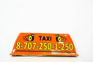 Шашка такси Бобр